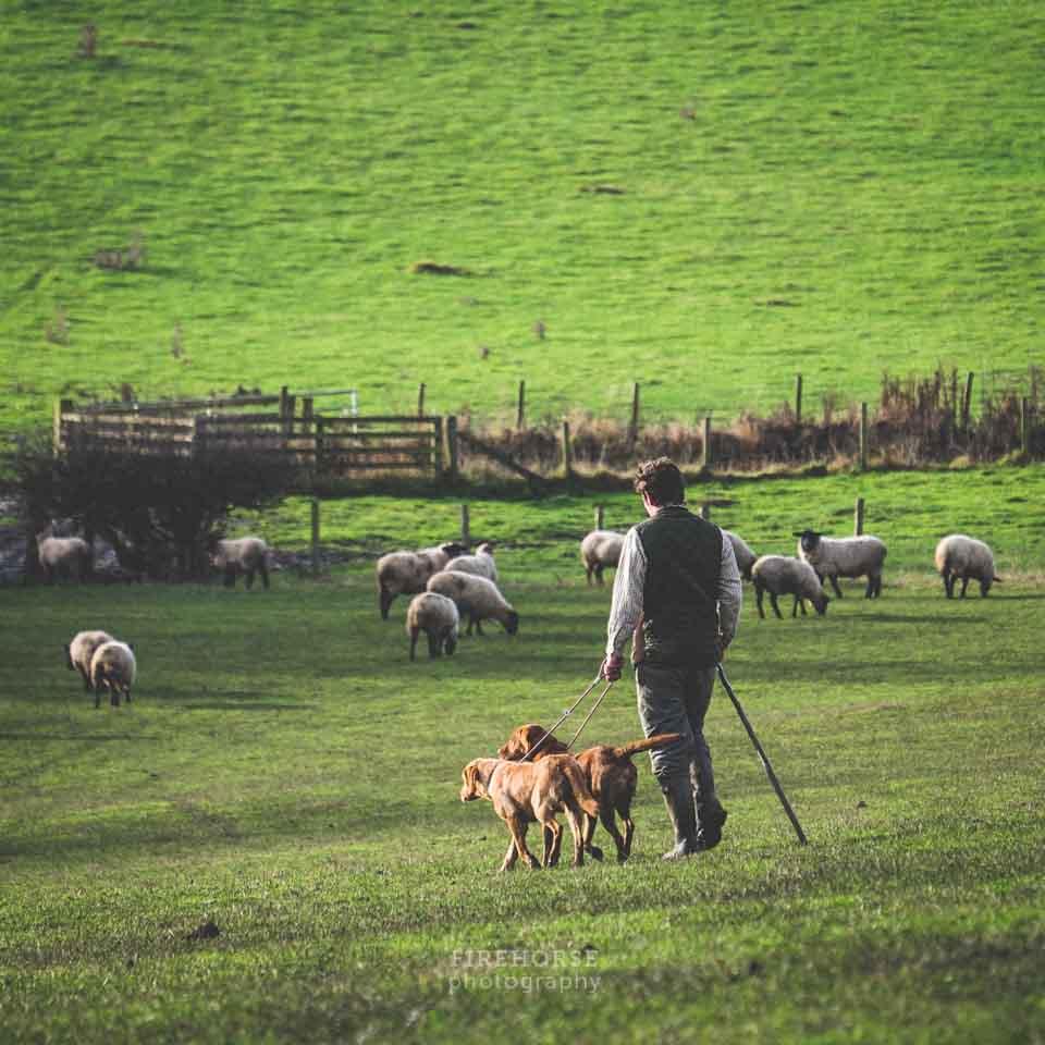 Fieldsports-Photographer-052
