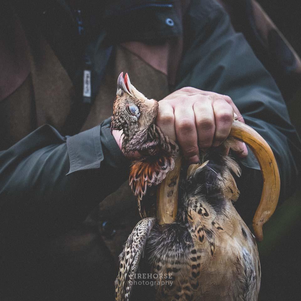 North Yorkshire Fieldsports Photographers