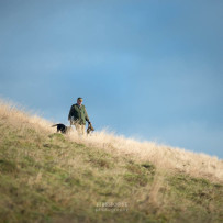 Raisthorpe Manor Shoot – Pheasant & Partridge Shoot Day in North Yorkshire