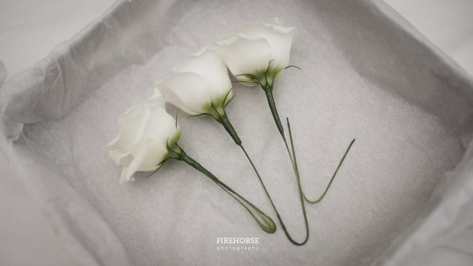 Rudding-Park-Wedding-Photography-009